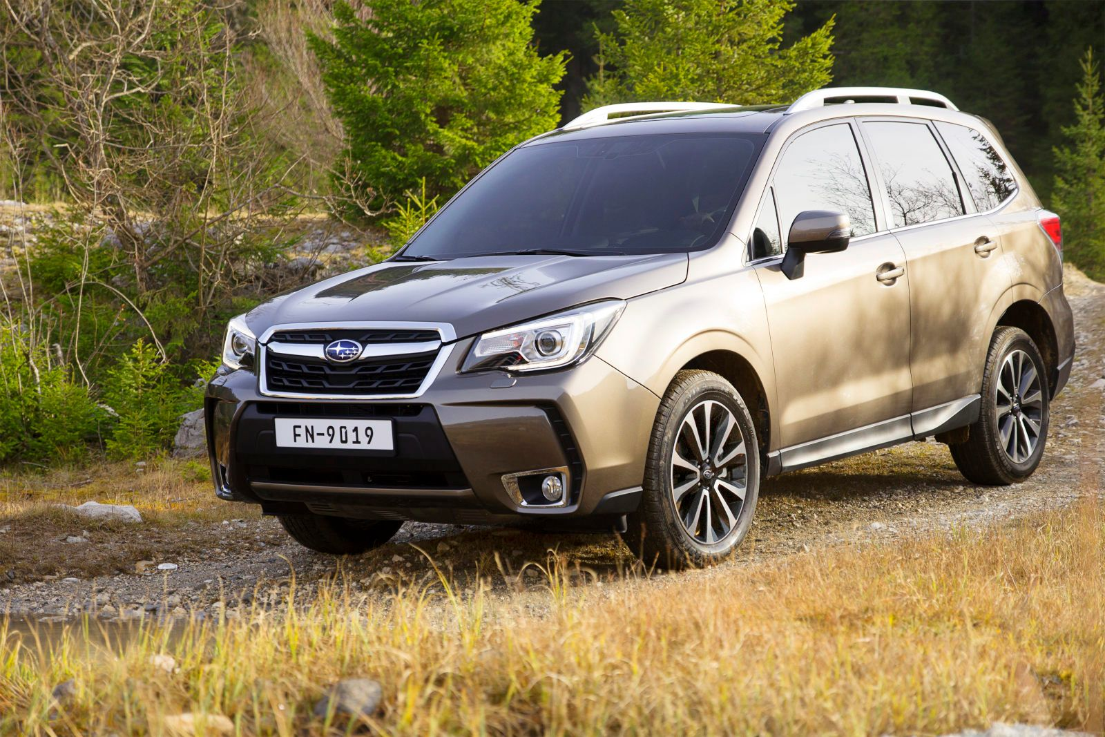 forester-2016-012